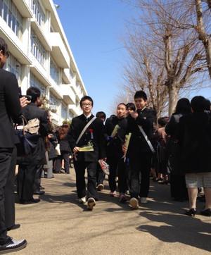 Kai_sakura